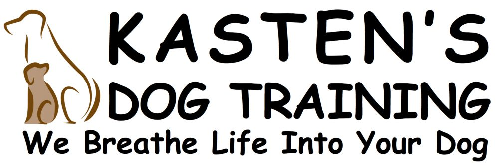 Dog training, boarding, puppy preschool, behavior modification